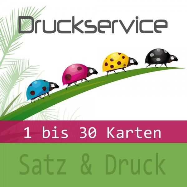 DRUCK.MENU.1.30