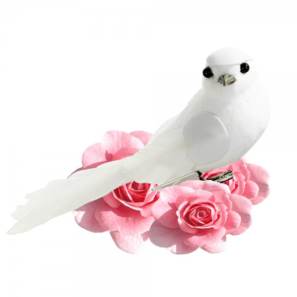 TAL.S.AIR.BIRD